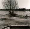 marais de selsoif gelé hiver 2002 photo1